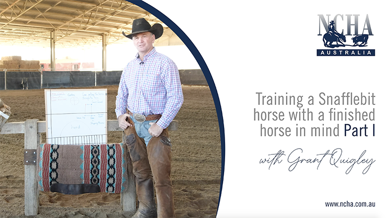 NCHA Featured Post Image